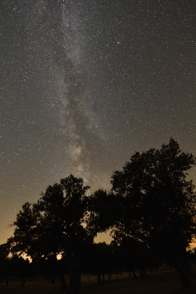 Extremadura, birds, birdwatching, stars, Milky-way, holiday, August