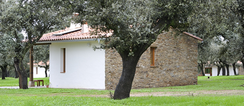 Extremadura, holiday, chalet, Finca Las Abubillas, birds, birdwatching